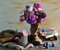 Still Life With Asters In Boots Royalty Free Stock Photo