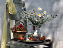 Still Life With Camomiles And Basket Of Strawberry Stock Images