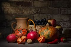 Still Life With Fruit And Pumpkin Stock Images