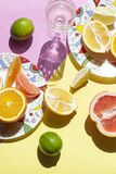Still Life With Lemons, Oranges And Limes. Stock Photos