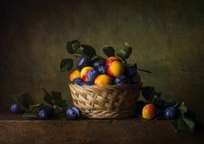 Free Still Life With Nectarines And Plums Royalty Free Stock Image - 99975766