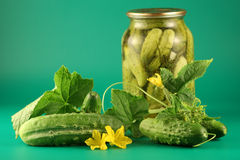 Still-life With Pickles Royalty Free Stock Image