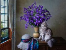 Free Still Life With Splendid Bouquet Of Bluebells And Pretty Kitty Stock Photos - 214060193