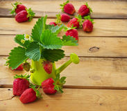 Still Life With Strawberries Royalty Free Stock Photography