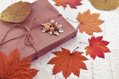 Free Still Life With Wrapped Gift And Fallen Leaves Stock Image - 61839101