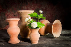 Still life withe jasmine flower in vase Royalty Free Stock Images