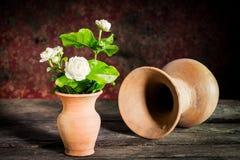Still life withe jasmine flower Stock Photography