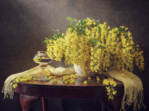 Still life with yellow acacia. Still life with bunch of yellow acacia in white clay jar, yellow scarf, a glass of white wine with flowers in it, on a dark stock photos