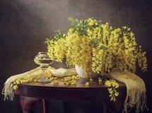 Still life with yellow acacia Stock Photos