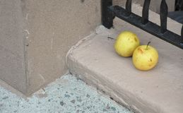Apples on the Stoop. Still life, yellow apples on a Manhattan stoop.   Shot as is, very little correction to highlight the textures Stock Images