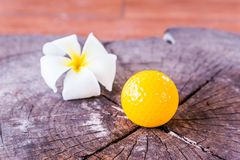 Still life Yellow Miniature Golf Ball On White Background. Stock Photo