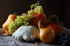 Still life with zucchini, pumpkin, squash and grape. Seasonal vegetables and fruit beautifully stacked on the table Royalty Free Stock Photos