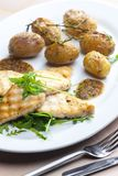 Still lifegrilled cod with potatoes. Gastronomy, cuisine, food, meal, nutrition, nourishment, healthy, vegetarian, cooked, plate, fish, rocket royalty free stock images