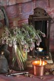 Black Magic Spells. Wiccan spells. Still Live: Old oil lamps, antique books, dried rose buds, a burning candle in a copper bowl, medicine bottles, lavender Stock Photography