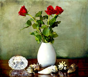 Still llife with red roses candle and shells Royalty Free Stock Images