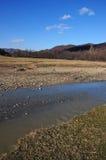 Still mountain river in autumn Stock Photo