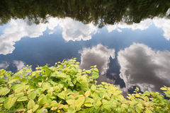 Still river cloud reflection Stock Photography