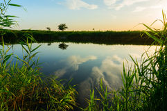 Still water landscape Royalty Free Stock Photo