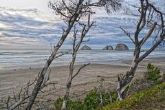 Stilla havet HDR Royaltyfri Fotografi