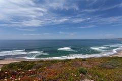 Stilla havet - Monterey, Kalifornien, USA arkivbilder