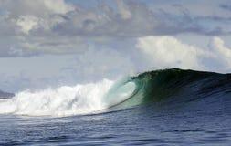 Stilla havet som surfar vågen Royaltyfria Bilder