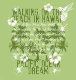 Stillahavs- dröm- hav Royaltyfria Bilder