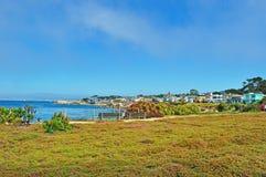 Stillahavs- dunge, Kalifornien, Amerikas förenta stater, USA Royaltyfri Bild