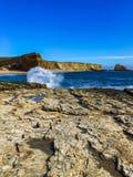 Stillahavs- hav Royaltyfri Foto