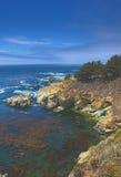 Stillahavs- kustlinje i sommar Tid Bild som tillsammans med tas av huvudvägen nummer 1 i Kalifornien Royaltyfri Bild