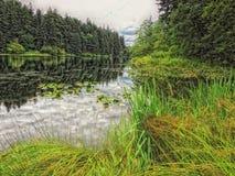 Stillahavs- nordvästliga HDR Royaltyfria Foton