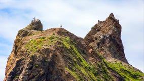 Stillahavs- nordv?stlig kust, USA - den slingriga USA-rutten 101 l?ngs den dimmiga Oregon kustlinjen n?ra Yachats fotografering för bildbyråer