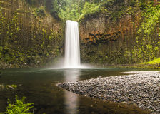 Stillahavs- Northwest vattenfall Arkivfoto