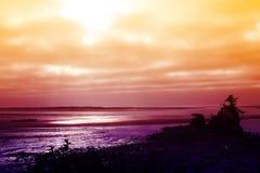 Stillahavs- solnedgång för kust Royaltyfri Foto