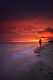 Stillahavs- solnedgång för strand Arkivbild