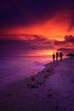 Stillahavs- solnedgång för strand Royaltyfri Bild