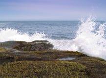 Stillahavs- strand northwest Royaltyfri Fotografi