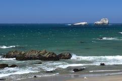 Stillahavskusten mellan den Morro fjärden och Monterey, Kalifornien, USA Arkivfoto
