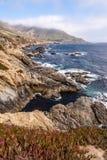 Stillahavskusten stora Sur, Kalifornien, USA Arkivfoto