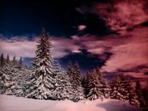 Stille de winterzonsondergang Stock Afbeeldingen