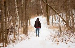 Stille Gang op een de Wintersleep stock afbeeldingen