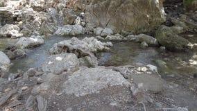 Stille kreek in de bergen van Rhodos Epta Piges stock videobeelden