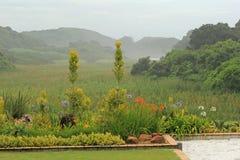 Stille mistige ochtend in vallei in Umhlanga, Zuid-Afrika Royalty-vrije Stock Afbeelding