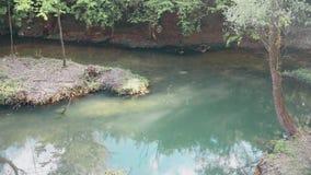Stille rivier op de berg en het eiland in het midden van de rivier stock video