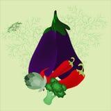 Stilleben av aubergine, dill, chilipeppar, kronärtskockan och broccoli Arkivbild
