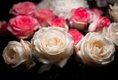 Stilleben av den rosa bukettblomman Härliga nya rosa rosor Rose Posy Wedding Bouquet hög av rosa och vita nya rosor arkivfoto