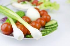 Stilleben av grönsaker i platta Royaltyfri Fotografi