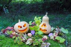 Stilleben av halloween pumpor Arkivfoto