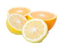 Stilleben av klippta apelsiner och citroner Royaltyfri Foto