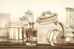 Stilleben av olik glasföremål - tappningstil royaltyfria foton