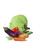 Stilleben av olika grönsaker Arkivbilder